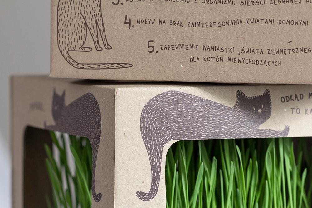 Studio XS - ilustracje pudełko opakowanie